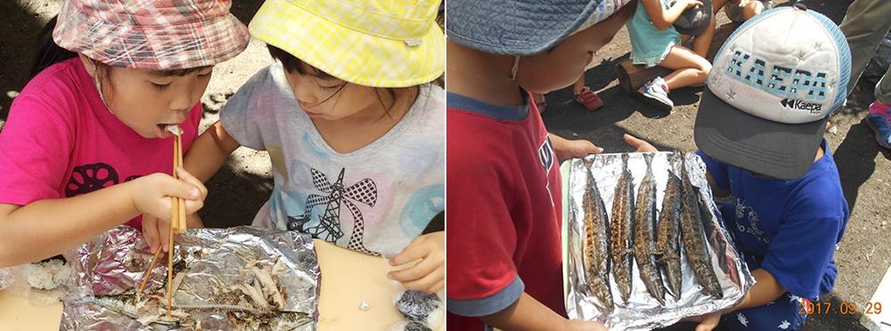秋刀魚まつり